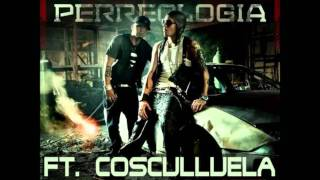 Alexis & Fido ft. Cosculluela - Blam Blam (Perreologia) + LINK DE DZKRGA
