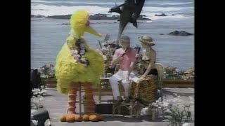 """Big Bird on """"Live with Regis and Kathie Lee"""""""