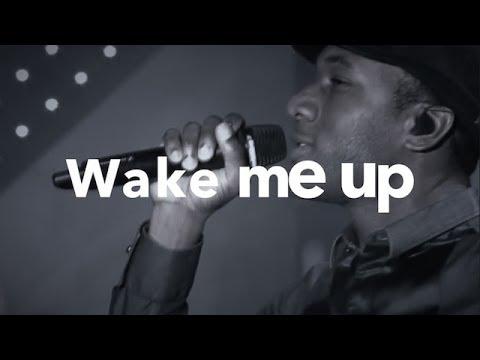 ALOE BLACC  WAKE ME UP LYRICS