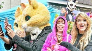 MEANWHILE IN JAPAN // Halloween Ghost Cat Festival // Bakeneko
