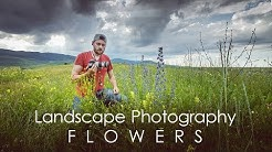 Tips for Photographing Summer Flowers | Landscape Photography