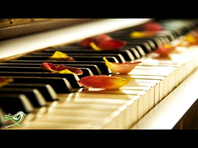 Relaxing Piano Music: Sleep Music, Meditation Music, Soothing Music, Calming Music ★77