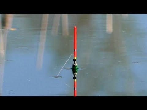 КАРАСЬ НА ПОПЛАВОК 2020! Ловля карася на поплавочную удочку. Рыбалка 2020