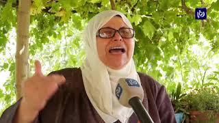 عائلة أبو هيكل في حي تل رميدة بالخليل تواجه الاستيطان بالصمود (14/7/2019)