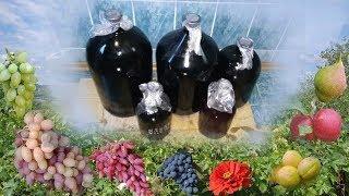 Выдержка и хранение домашнего вина