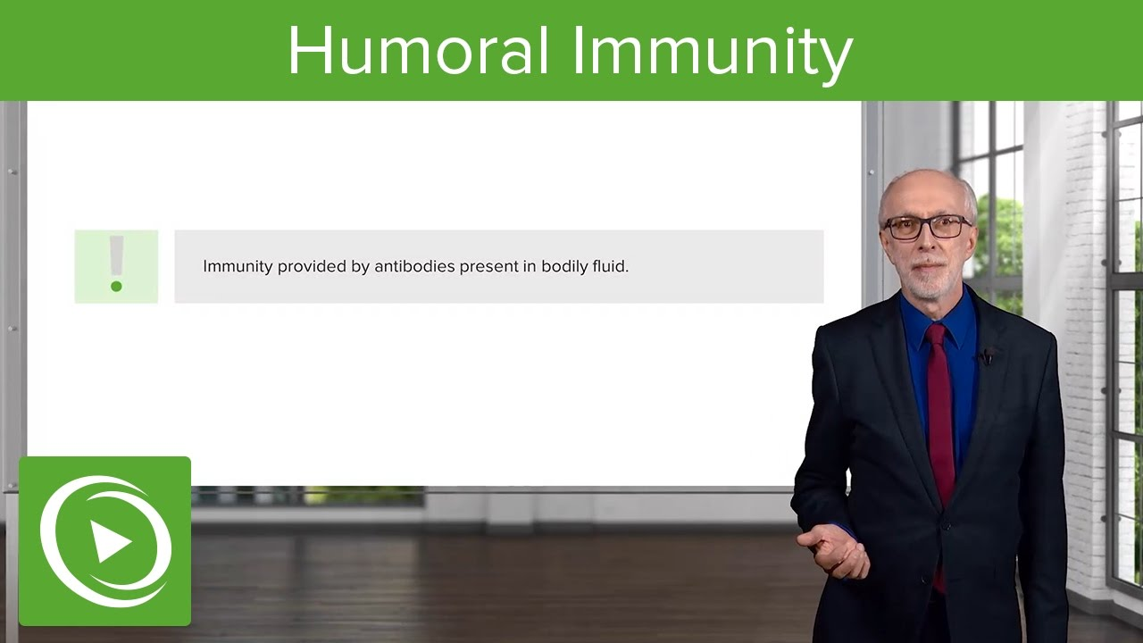 Introduction to Humoral Immunity – Immunology | Lecturio