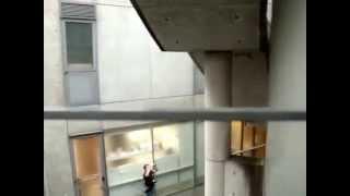Tadao Ando - Collezione Gallery in Tokyo