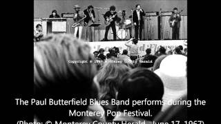 Paul Butterfield Blues Band   -Losing Hand (Live)