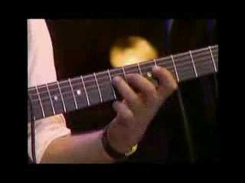 Bireli Lagrene Guitar Solo- Vienne Song