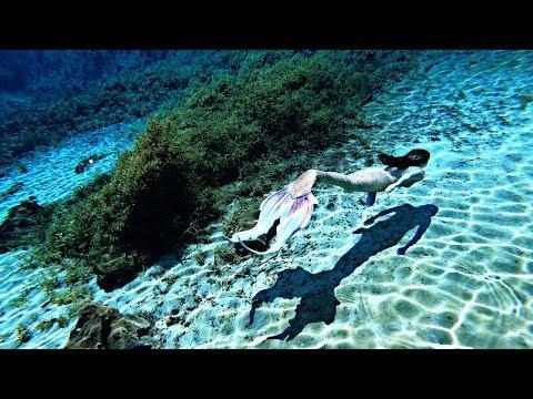 Mermaid Cataleya | EVOLUTION 4K |�