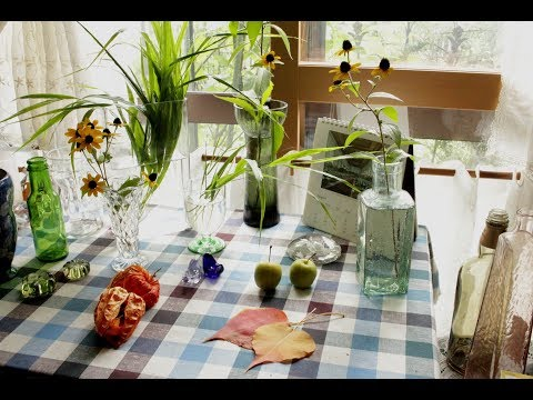 小さな窓の花ごよみ 681 晴れ間に ♪ ロシニョール:つのだたかし(静かな音楽)