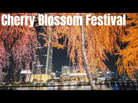 3 - Seokchon Lake(Lotte World Tower)  Cherry Blossom Festival 2018 (석촌호수-공원 벚꽃축제) in Seoul Korea