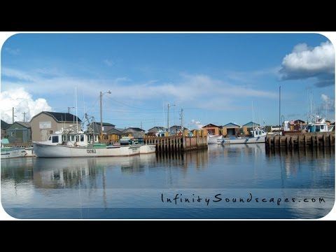 Quiet Harbor - Relaxing binaural audio ASMR no talking sounds for sleep