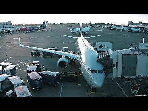 Mayhem at Sea-Tac Airport