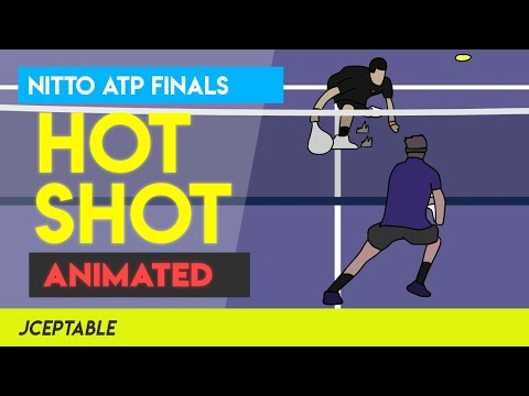 I animated the Federer Hot Shot Volley against Djokovic during ATP Finals 2012! This took 26+ hrs to make