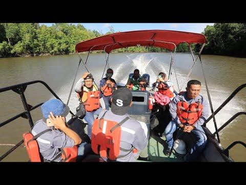 Menyusuri Hutan Mangrove Timika
