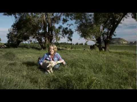 LIANIE MAY - Pleister Vir My Hart (AMPTELIKE MUSIEK VIDEO)