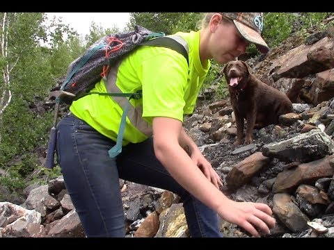 Finding Pyrite with Bitumen