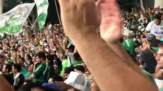 Torcida esmeraldina comemora resultado de clássico entre Goiás e Atlético-GO