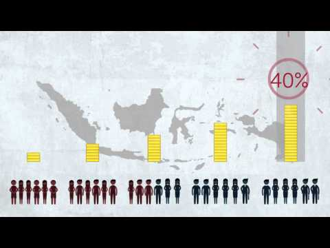 Perceptions of Indonesia's Inequality