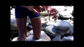 Pesca di gamberi e granchi con teste di alici ad Agropoli - come costruire un