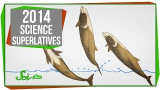 4 Science Superlatives of 2014