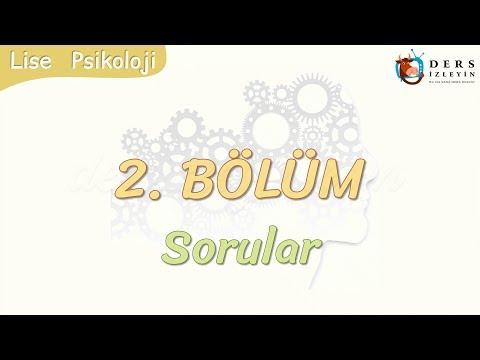 2. BÖLÜM / SORULAR