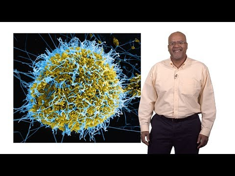 Paul E. Turner (Yale) 1: Introduction to Virus Ecology and E