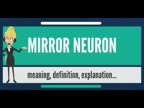 What is MIRROR NEURON? What does MIRROR NEURON mean? MIRROR NEURON meaning, definition & explanation