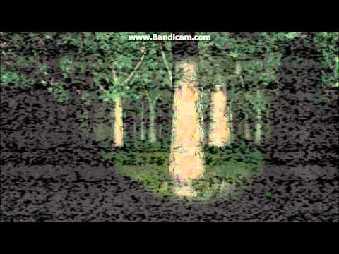 Lets Play :: Slender :: with Connor, Peter and Hayden