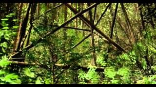 Détour mortel - film complet VF