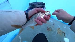 Труба Шарыпово Березовское Водохранилище Плотва Сорога Зимняя Рыбалка 2020