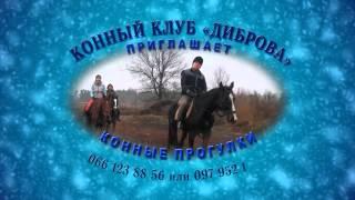 Конный Клуб Диброва - видео листовка(Конный Клуб #Диброва - #видео листовка Конный #клуб