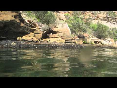 CENTRAL COAST BEACHES - KILLCARE BEACH - 'THE ROCKPOOL'