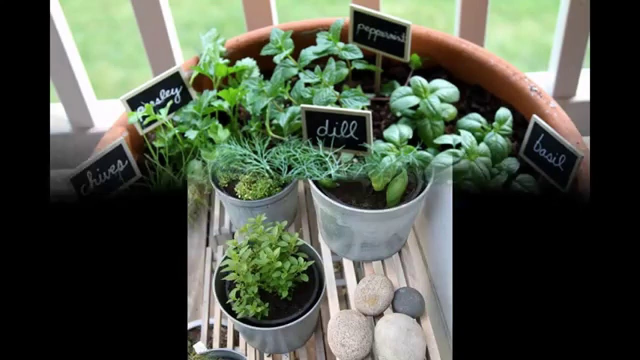 Garden Ideas] herb garden apartment - YouTube
