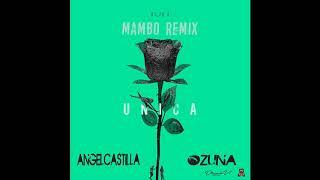 Ozuna - Única [Mambo Remix Angel Castilla] 🐻 A U R A