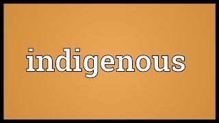 Indigenous Meaning