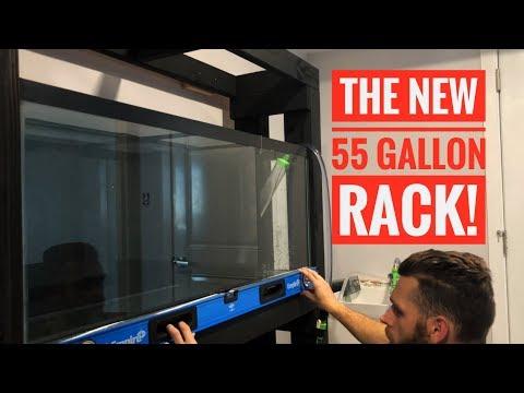 MOVING AQUARIUM FISH! | The 55 Gallon DIY Aquarium Rack is DONE!