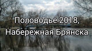 Половодье 2018, набережная Брянска.