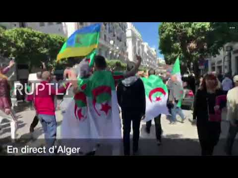 Algeria: Protests against Boutefika continue on streets of Algiers