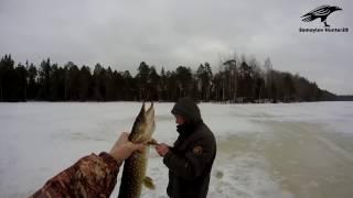 Рибалка 19.03 | Лісові озера | Холмогорский район