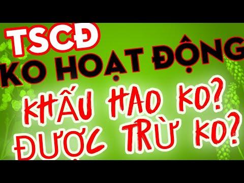 TSCĐ không hoạt động có được trừ   Kế Toán Tín Việt   Kế toán thuế   Quyết toán thuế thực chiến