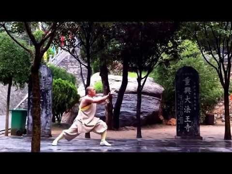 Shaolin Lao Tong Bi Quan/Luohan Hu Shen Chui  少林罗汉护身锤 by Master Shi Miao Zhi