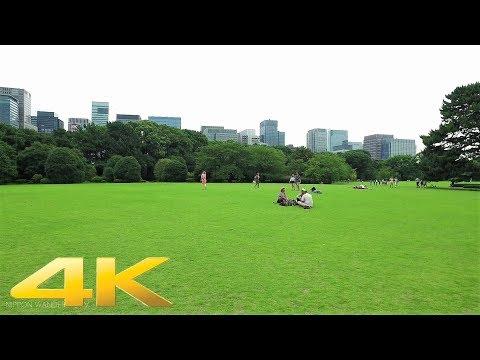 Walking around Imperial Palace East Garden, Tokyo - Long Take【東京・皇居東御苑】 4K