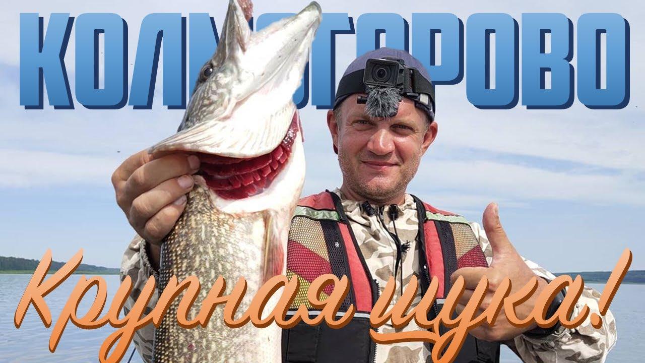 Колмогорово - щучий край. Енисейские хроники 2020