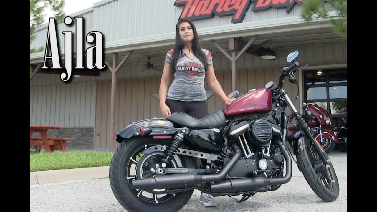 2017~2018 harley-davidson iron 883 for sale in brandon - youtube