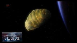 Тихоходка в космосе