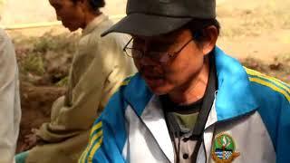 Tanah Umum Muara Ciawi Caringin Garut Jawa Barat 4  Saksi Pa Entis