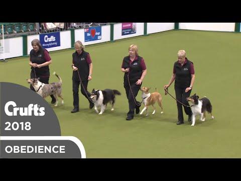 Obreedience - Smooth Operators | Crufts 2018