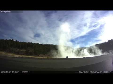 Yellowstone Bison recorded by hot springs with my Blackvue dash cam.
